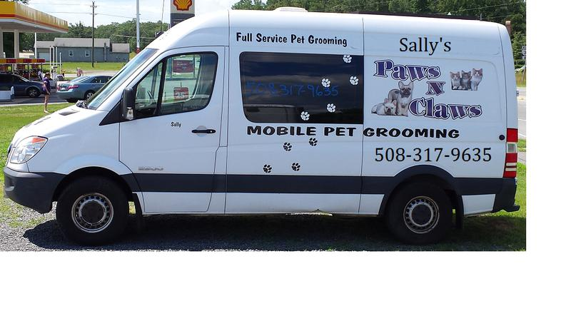 paws to claws mobile grooming pet grooming near me pet